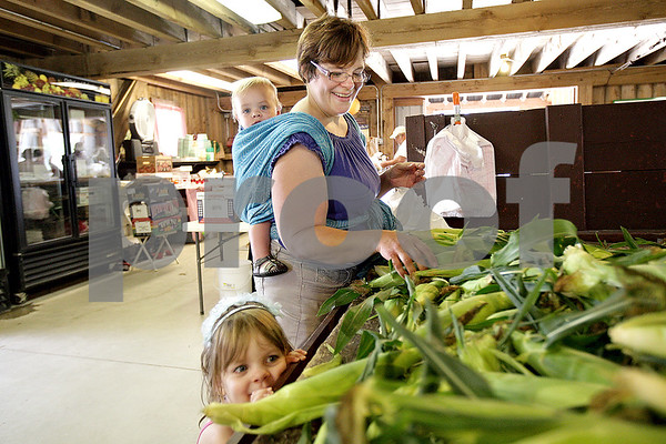 Monica Maschak - mmaschak@shawmedia.com<br /> Christi Bedell picks out sweet corn with her daughter, Celia Bedell, 3, and her son, Spencer Bedell, 1, on the first day of sweet corn sales at Wiltse Farm in Maple Park on Wednesday, July 17, 2013. The sweet corn will be freshly picked daily.