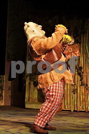 Monica Maschak - mmaschak@shawmedia.com<br /> Dan Hyde, as Shrek, sings in one of the opening scenes during a dress rehearsal for Shrek the Musical at Stage Coach Player in Dekalb on Tuesday, June 4, 2013. The show opens on Thursday, June 6 and run through June 16.