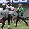 Rob Winner – rwinner@shawmedia.com<br /> <br /> Northern Illinois quarterback Matt Williams looks for a receiver during practice at Huskie Stadium in DeKalb, Ill., Wednesday, March 27, 2013.