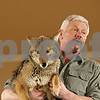Rob Winner – rwinner@shawmedia.com<br /> <br /> John Basile, of Big Run Wolf Ranch, holds up Mahala, a purebred mid-western coyote, during a Midwest Museum of Natural History event at the DeKalb County Community Foundation in Sycamore, Ill., Saturday, March 16, 2013.