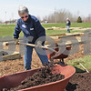 Monica Maschak - mmaschak@shawmedia.com<br /> Volunteer Cindy Capek, with the park district, shovels compost into a wheel barrel outside of the DeKalb County Community Services Department on Saturday, April 27, 2013. The Community Services Department partnered with the DeKalb County Community Gardens to install a half-acre garden that will feature 30 raised beds of fruits, vegetables and herbs to increase fresh produce for low-income residents and those isolated from full-service grocery stores. The garden will initially serve the Women, Infants & Children program, Veterans Assistance Commission, residents at Heritage Woods and families enrolled in Head Start. The funding to start the garden came from $1,500 in federal grants.