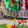 Erik Anderson - For the Daily Chronicle<br /> Cinco De Mayo dancers line up before heading to the stage during the 16th annual Cinco De Mayo Festival in downtown Sycamore behind Taxco restaurant on Sunday, May 5, 2013. The festival is open to the public Sunday, May 5th from 1pm-9pm.