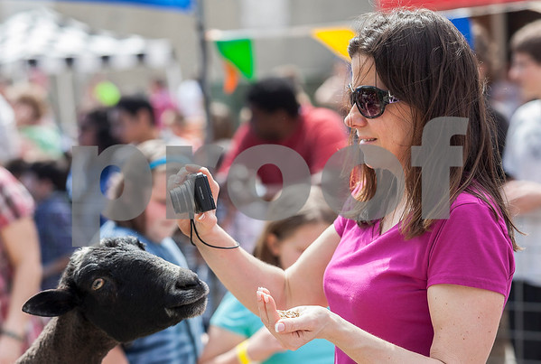 Erik Anderson - For the Daily Chronicle<br /> Laura Gagalski of Sycamore photographs her son Aidan, while a goat reaches its neck for some food in her hand while in the petting area during the 16th annual Cinco De Mayo Festival in downtown Sycamore behind Taxco restaurant on Sunday, May 5, 2013. The festival is open to the public Sunday, May 5th from 1pm-9pm.