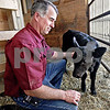 Monica Maschak - mmaschak@shawmedia.com<br /> Cattle feed lot owner Jamie Willrett pets a month-old calf being raised for his children's 4-H project, which is a livestock project where the steers get judged for quality at fairs. Last year's drought increased the price of feed, which led to farmers like Willrett using different substitutions for feed. How prices fluctuate this year will ultimately depend on the weather.