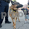 Monica Maschak - mmaschak@shawmedia.com<br /> Hunter Lynch, 2, of Cortland, reaches to pet five-year-old German shepherd Kane, with the DeKalb County Police Department's K-9 Unit, during Sycamore's first Tuesdays on the Town event on Tuesday, May 14, 2013. Discover Sycamore hosted the Touch-A-Truck event, allowing children to become familiar with vehicles belonging to the police department, fire department, EMS and Public Works.