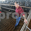 Monica Maschak - mmaschak@shawmedia.com<br /> Jamie Willrett checks on some of his 3000 cattle in one of the barns on his Malta cattle feed lot on Tuesday, May 14, 2013. Last year's drought increased the price of feed, which led to farmers like Willrett using different substitutions for feed. How prices fluctuate this year will ultimately depend on the weather.