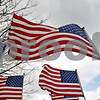 Monica Maschak - mmaschak@shawmedia.com<br /> American flags lined all the walkways in front of the DeKalb County Court House on Saturday, November 9, 2013.