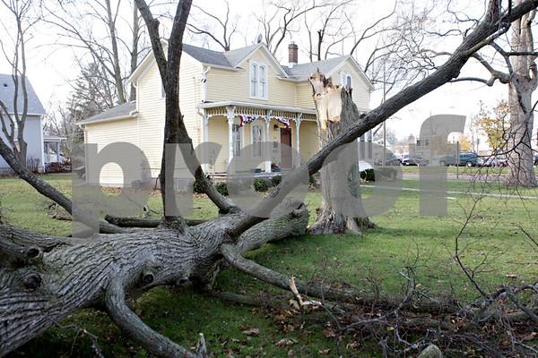 Rob Winner – rwinner@shawmedia.com<br /> <br /> A tree damaged by Sunday's storms is seen on the 500 block of Grove Street in DeKalb on Monday, Nov. 18, 2013.