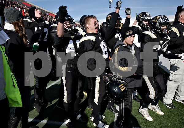 Monica Maschak - mmaschak@shawmedia.com<br /> The Panthers on the sideline cheer for the players on the field who just scored a touchdown against Tri-Valley at the IHSA Class 1A Football Championships at Huskie Stadium on Friday, November 29, 2013.
