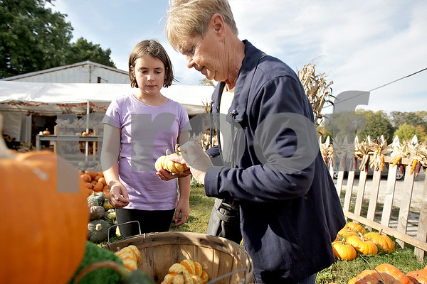 Monica Maschak - mmaschak@shawmedia.com<br /> Samantha Didio, 9, and her grandmother, Donna Didio, of Sycamore, pick out pumpkins for decorating at Wessels Family Farm stand in DeKalb on Thursday, October 10, 2013. Didio and her grandmother have made pumpkin-selecting a tradition for five or six years.