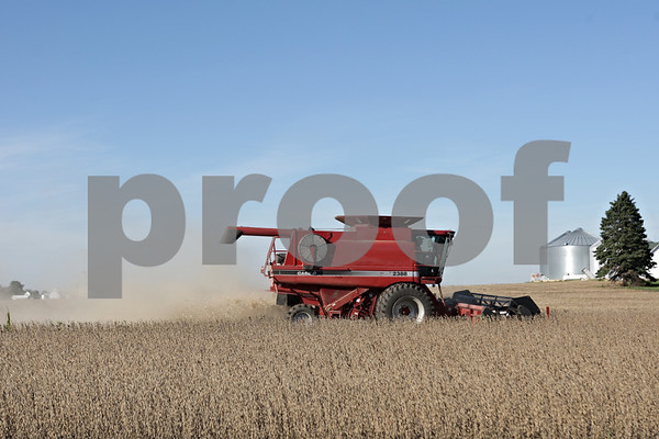 Rob Winner – rwinner@shawmedia.com<br /> <br /> A combine being driven by Mike Mortell harvests soy beans from a field near Bastian Road in Hinckley, Ill., Wednesday, Oct. 9, 2013.