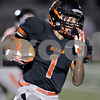 Monica Maschak - mmaschak@shawmedia.com<br /> Halfback Tony Tate carries the ball in the first quarter against Rochelle on October 25, 2013.