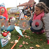 Rob Winner – rwinner@shawmedia.com<br /> <br /> Genna Gower, 10, of Sycamore checks out her pumpkin entry at the Sycamore Pumpkin Festival on the lawn of the DeKalb County Courthouse in Sycamore, Ill., Wednesday, Oct. 23, 2013.