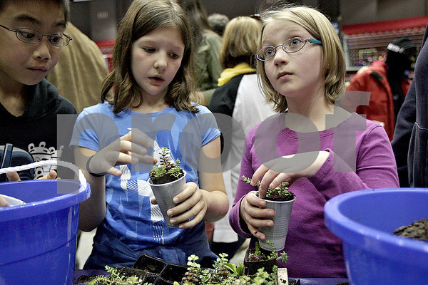 Monica Maschak - mmaschak@shawmedia.com<br /> Niya Farley (left), 9, and Ava Salovesh, 9, plant succulent plants into a cup to take home at this year's Annual Celebration of Science, Technology, Engineering and Math (STEM) at  the Northern Illinois University Convocation Center on Saturday, October 19, 2013.