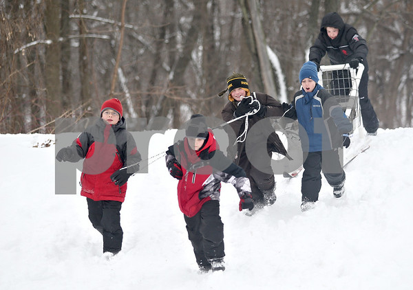 Monica Maschak - mmaschak@shawmedia.com<br /> From Left: Sycamore's Cub Scout Pack 118's Karl Peterson, 10, Nolan Benson, 11, Max Wray, 10, Syler Larson, 11, and Alex Grados, 10, race their sled around a course at the annual Klondike Derby at the Sycamore Sportsman's Club on Saturday, February 1, 2014.