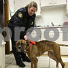 Rob Winner – rwinner@shawmedia.com<br /> <br /> DeKalb County Animal Control warden Jenny Eisman checks a stray boxer dog for an identification microchip at the Malta Veterinary Hospital on Monday, Jan. 13, 2014. The boxer, which appeared to have suffered from a broken leg, was picked up by Eisman at a farm north of Waterman.