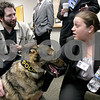 Monica Maschak - mmaschak@shawmedia.com<br /> Disabled Navy veteran Kevin Finizio (left) talks with student Jennifer Lotus about Zander, a retired Massachusetts State Police K-9, after a presentation given by the students on Save-a-Vet at Barsema Hall on Thursday, March 6, 2014.