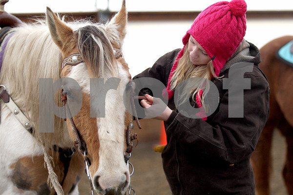 Monica Maschak - mmaschak@shawmedia.com<br /> Cassie Lowe, 19, preps her horse, Blaze, to ride during an Advanced Spring Break Horse Camp at Runaway Ranch in Sycamore on Tuesday, March 25, 2014.
