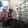 Danielle Guerra - dguerra@shawmedia   Exotic animal veterinarian Susan Brown, of Batavia, receives a kiss from a young alpaca while petting another alpaca that the younger one has bonded with.  Brown said that the young alpaca has started trying to nurse off of the older female but her milk has dried up because of malnourishment.