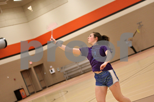 dspts_0516_badminton1.jpg