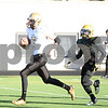 dspts_1103_SycamoreFB6