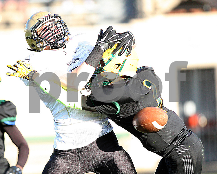 dspts_1103_SycamoreFB11