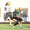 dspts_1103_SycamoreFB18