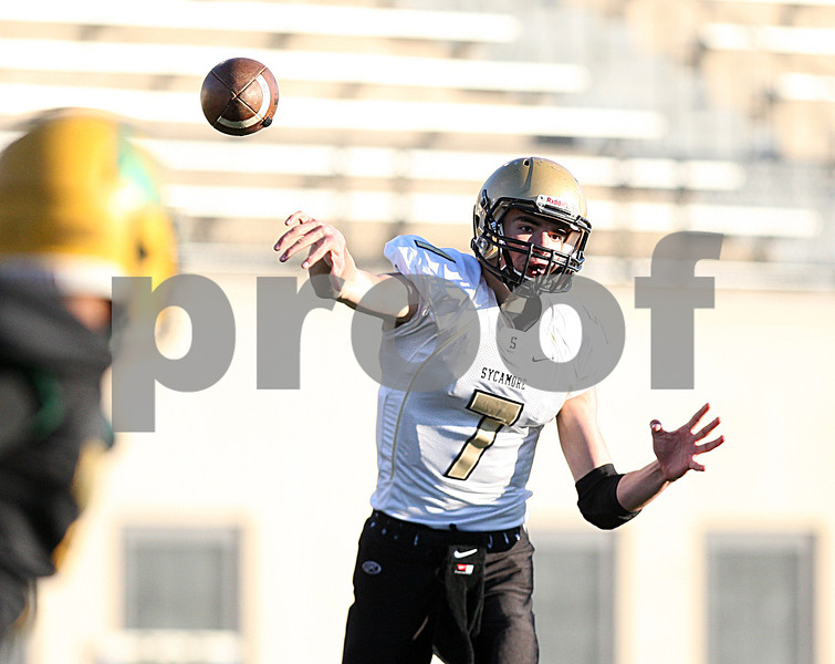 dspts_1103_SycamoreFB14
