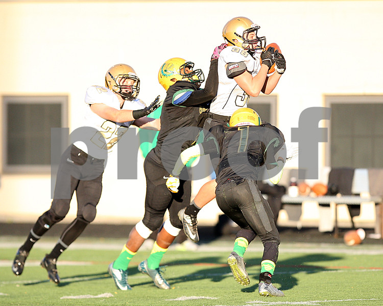 dspts_1103_SycamoreFB17