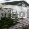 Monica Maschak - mmaschak@shawmedia.com<br /> Ivy grows on the vacant house at 628 Culver St., DeKalb. The house is vacant due to a foreclosure.
