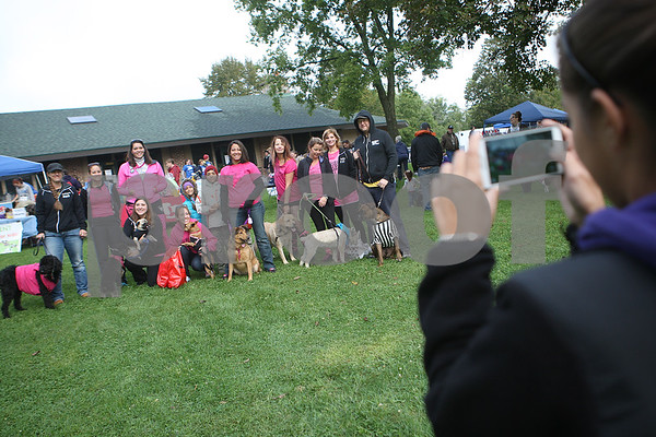 dnews_adv_MuttStrut5