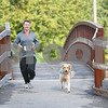 dnews_adv_MuttStrut7