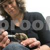 dnews_0411_BabyAnimals1