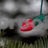 dnews_1203_SnowySycamore8