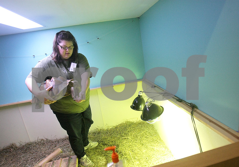 dnews_0206_MidwestMuseum3