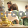 dnews_0206_MidwestMuseum4