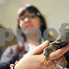 dnews_0206_MidwestMuseum1