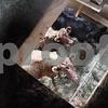 dnews_0203_small_farms4
