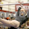 lspts_StateGym_HinsdaleSouth_bars4.jpg