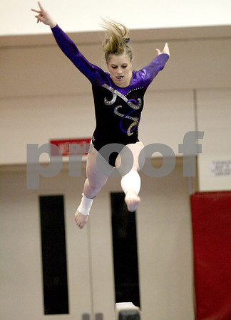 lspts_StateGym_warrenville_beam2.jpg