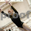 lspts_StateGym_HinsdaleSouth_bars3.jpg