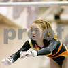 dspts_0223_state_gymnastics_bar2.jpg