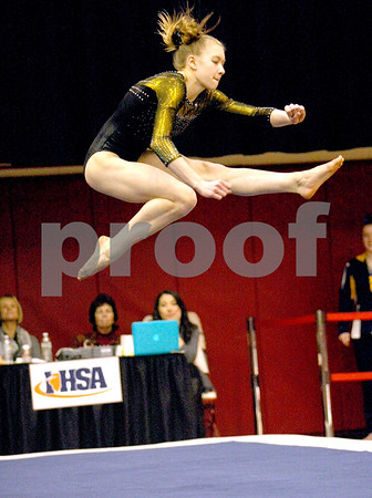lspts_StateGym_HinsdaleSouth_floor2.jpg