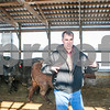 agmag_adv_LivestockPrices4