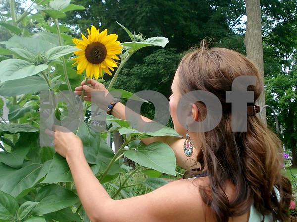 Leifheit with Sunflower.JPG