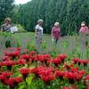 Garden Walk Participants in Stromborg Garden.JPG