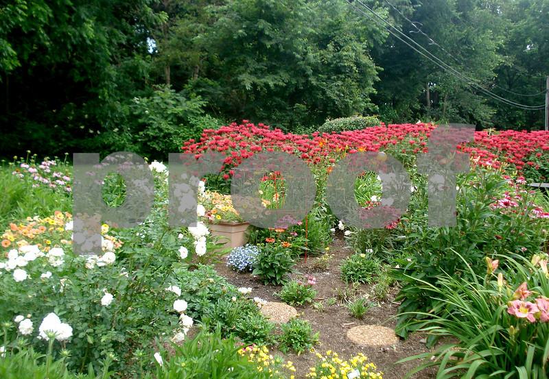 Stromborg Garden.JPG