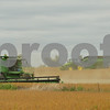 dnews_adv_harvest4727.JPG