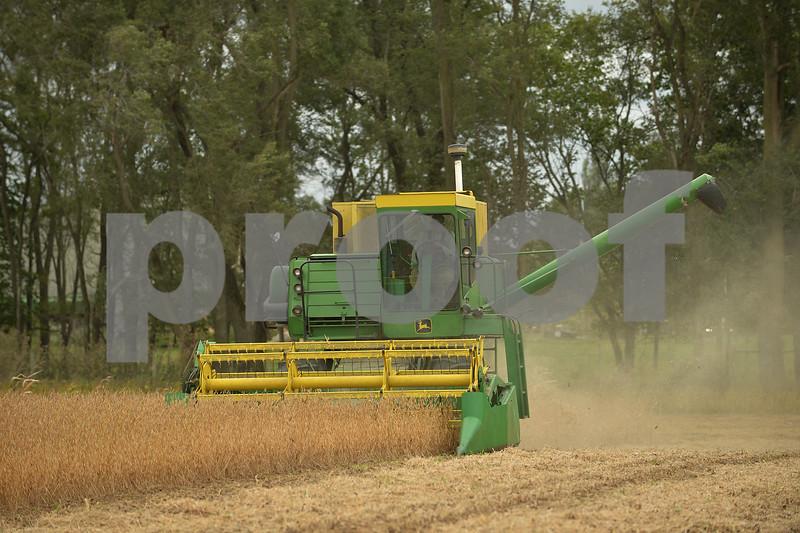 dnews_adv_harvest2.jpg