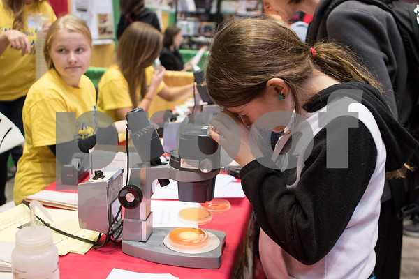 dnews_1019_STEM_fest6.jpg